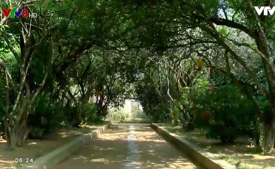 Nhà vườn An Hiên - Chốn bình yên xứ Huế