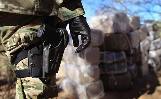 Nguồn ma túy từ Mexico tuồn vào Mỹ có xu hướng tăng nhanh