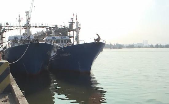 """[Tiêu điểm] Tàu vỏ thép """"đắm trên bờ"""", ngư dân có nguy cơ vỡ nợ"""