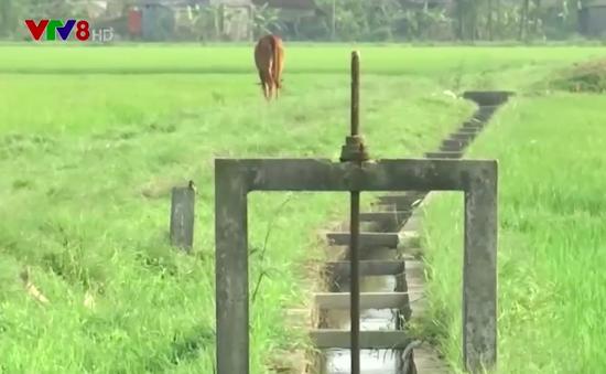 Người dân Quảng Trị khoan ruộng lấy nước tưới
