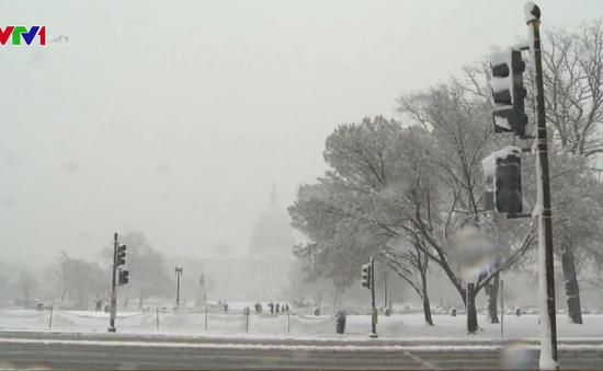 Bão tuyết tấn công Đông Bắc nước Mỹ, hơn 7.000 chuyến bay bị hủy