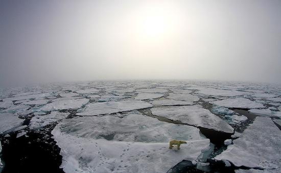 Hậu quả của biến đổi khí hậu ngày càng rõ rệt