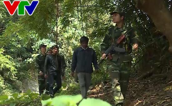 Quảng Trị tăng cường phòng chống xâm hại rừng trên vùng biên giới