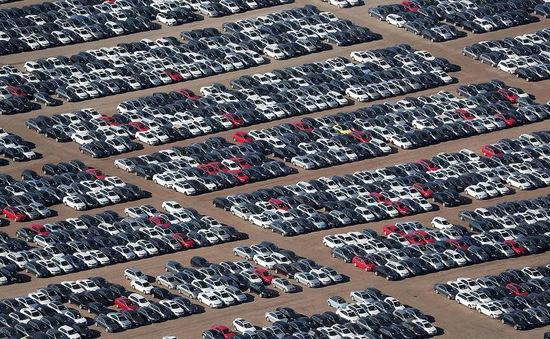 Hơn 300.000 xe diesel của Volkswagen nằm bãi ở Mỹ