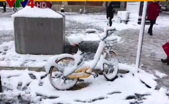 Giá lạnh kỷ lục ở châu Âu ảnh hưởng gì đến cộng đồng người Việt?