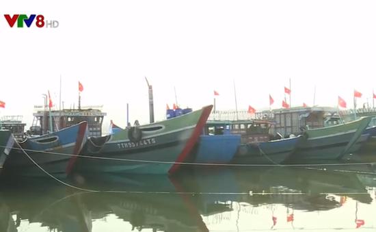 Bất cập khu neo đậu tàu thuyền ở Thừa Thiên Huế