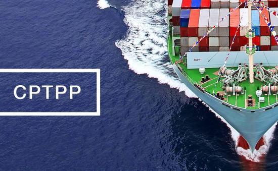 Việt Nam liệu có phải là quốc gia có lợi nhất sau CPTPP?