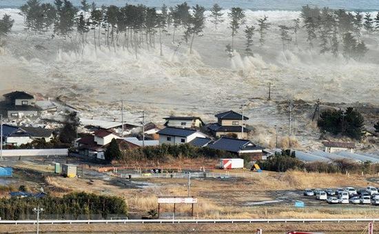 Siêu bão có thể nhấn chìm 1/3 thủ đô Tokyo