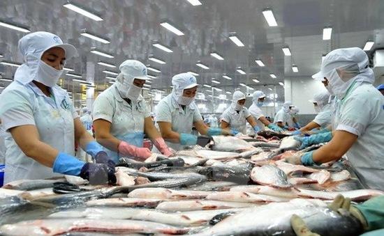 3 tháng đầu năm 2018, kim ngạch xuất khẩu cá tra đạt 430 triệu USD