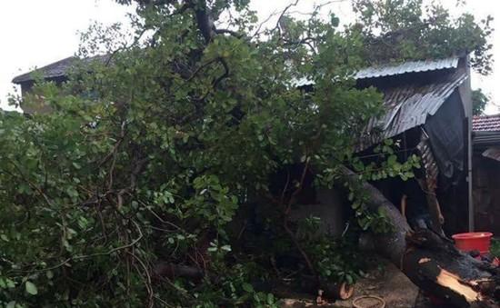 Đắk Lắk: Mưa lớn kèm lốc xoáy làm hơn 100 nhà dân bị tốc mái