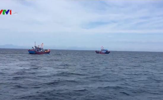 Bắt giữ tàu cá đánh bắt bằng xung điện