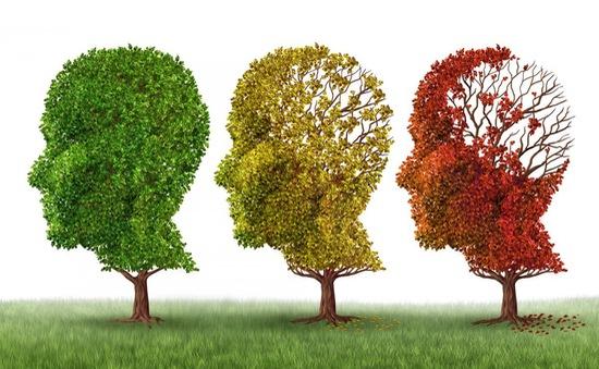 Thiếu ngủ làm tăng nguy cơ bệnh Alzheimer