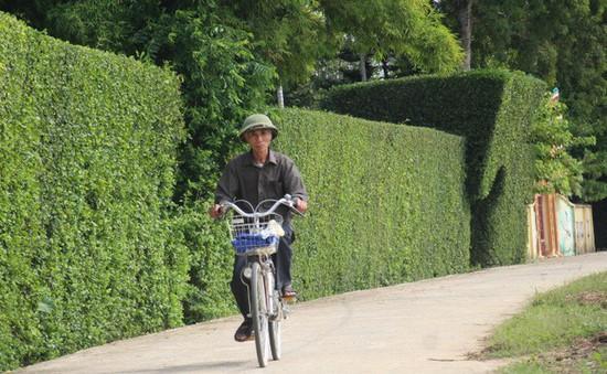 Ngỡ ngàng trước vẻ đẹp của làng quê Hà Tĩnh