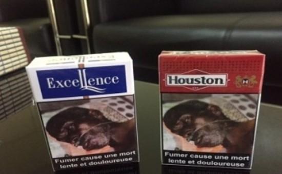 Senegal cảnh báo người dân về hiểm họa của thuốc lá