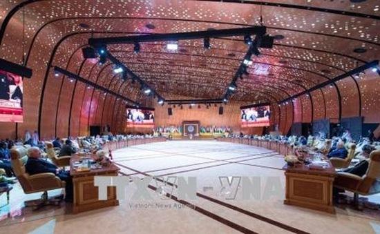 Các nước Arab khẳng định đoàn kết vì hòa bình khu vực