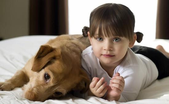 Lợi ích của việc nuôi chó trong gia đình