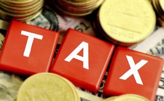 Cách xử lý hành vi trốn thuế TNCN tại Mỹ