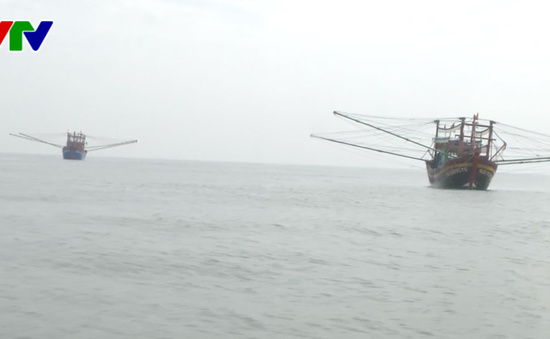 Quảng Bình: Bắt hai tàu giã cào tận diệt thủy sản trên biển
