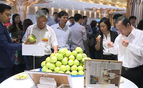 Hà Nội: Quyết tâm truy xuất nguồn gốc thực phẩm hoàn toàn bằng mã QRcode