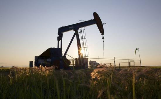 Giá dầu châu Á tăng do hoạt động khoan dầu của Mỹ giảm