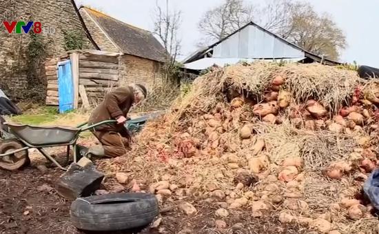 Nông dân Pháp giữ gìn phương pháp canh tác truyền thống