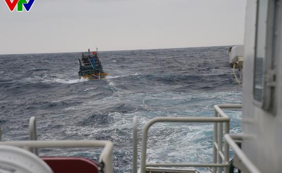 Tàu 365 Vùng 3 Hải quân cứu nạn tàu cá QNg 94635 TS