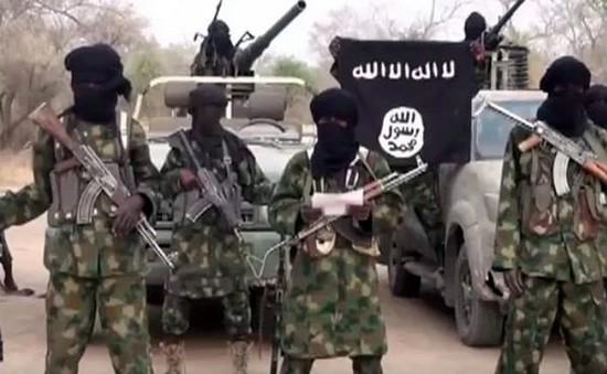 Quân đội Nigeria giải cứu hàng trăm con tin