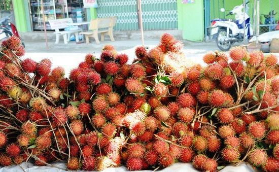 New Zealand nhập khẩu trái chôm chôm của Việt Nam