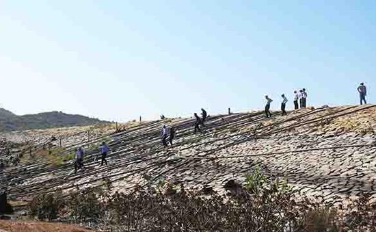 Bộ NN&PTNT kiểm tra tình hình hạn hán tại Ninh Thuận