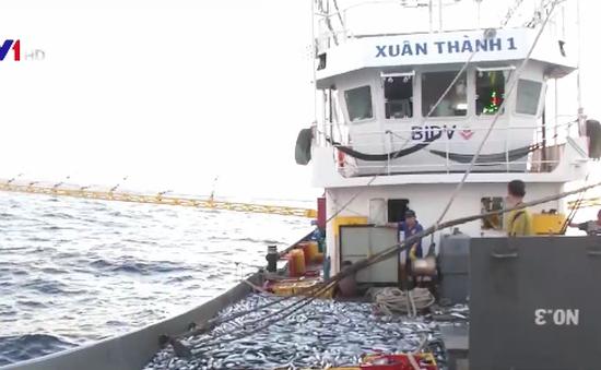Phát triển nghiệp đoàn nghề cá, đảm bảo an ninh trên biển