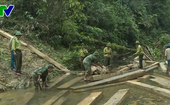 Vụ phá rừng quy mô lớn ở huyện Tuyên Hóa, Quảng Bình: Kỷ luật 5 cán bộ kiểm lâm
