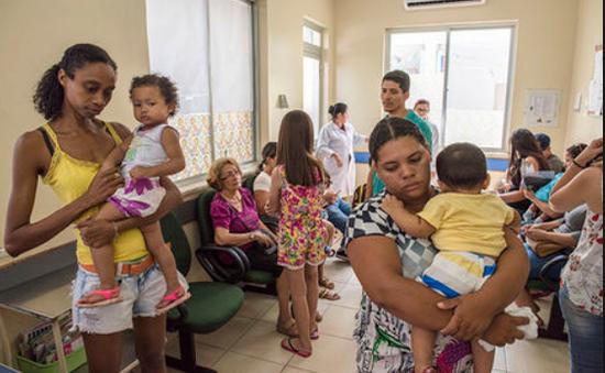 Sốt vàng da khiến hơn 400 người tử vong tại Brazil
