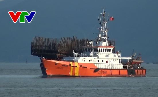 49 thuyền viên tàu cá Quảng Nam vào bờ an toàn sau gần 1 tuần lênh đênh trên biển