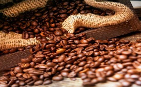 Lâm Đồng: Tăng cường giám sát các cơ sở sản xuất chế biến cà phê