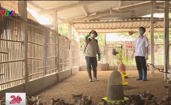 Bắc Giang: Cán bộ khuyến nông, thú y cấp xã lo mất việc đột ngột