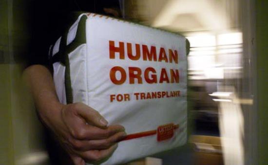 Mua bán nội tạng trái phép: Khe hở pháp lý và lưu ý với bệnh nhân
