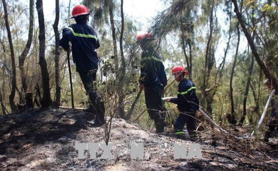 Quảng Nam: Dập tắt đám cháy tại rừng phòng hộ ven biển