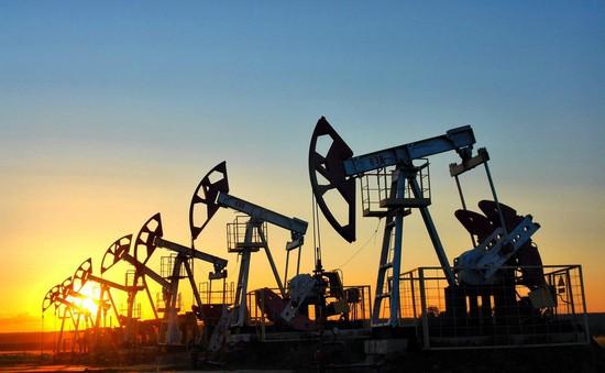 Giá dầu tăng hơn 2% sau khi Iran chiếm giữ tàu chở dầu của Anh