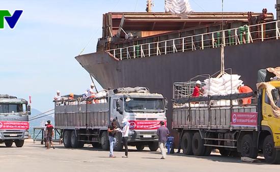 Hơn 30 tỷ đồng của các tổ chức phi chính phủ hỗ trợ người dân vùng bão Khánh Hòa