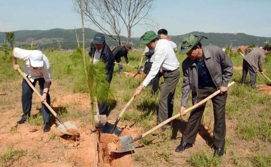 Lâm Đồng: Xây dựng Đà Lạt xứng đáng là thành phố bền vững về môi trường ASEAN