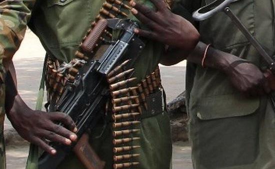 LHQ quan ngại về các vụ đụng độ gần đây tại khu vực Darfur ở Sudan