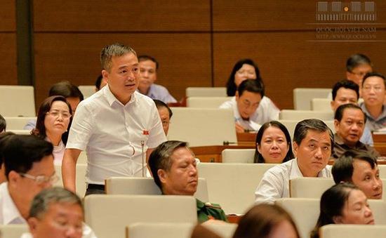 ĐBQH Nguyễn Lân Hiếu: Nếu BS Hoàng Công Lương không có tội thì án treo cũng không được
