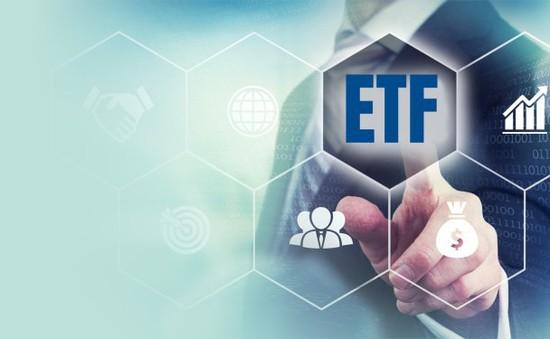 VNDirect dự báo danh mục cơ cấu Quý III/2019 của 2 quỹ ETF