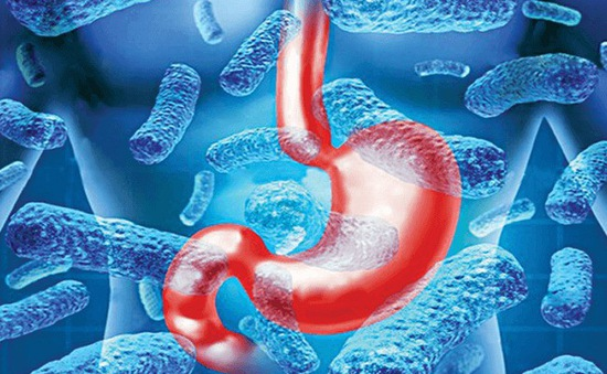 Vi khuẩn HP làm tăng nguy cơ mắc ung thư dạ dày