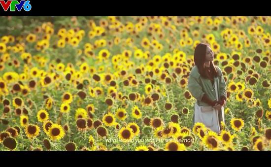 """""""Nhắm mắt thấy mùa hè"""" - Chuyện tình lãng mạn giữa xứ hoa anh đào"""