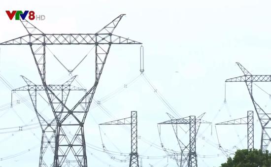 Quảng Trị bảo đảm an toàn hành lang lưới điện cao thế vào mùa nắng nóng