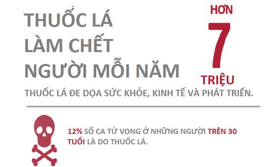 Quảng Trị : Mít tinh hưởng ứng Ngày Thế giới không thuốc lá