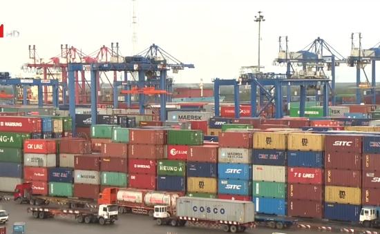 TP.HCM: Gần 400 container hàng tại cảng biển, sân bay không có người nhận