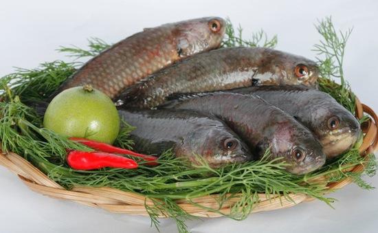 Ăn cá giúp cải thiện đời sống tình dục