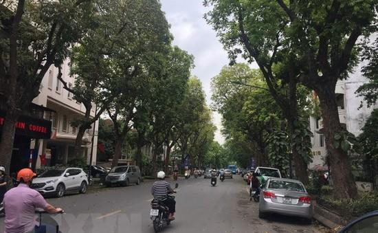 Hà Nội: Di chuyển cây xanh để thi công nhà ga S10 và S12